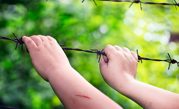 Child's hands on a rusty barbed wire Child's hands on a rusty barbed wire in a sunny green blurry background tetanus stock pictures, royalty-free photos & images