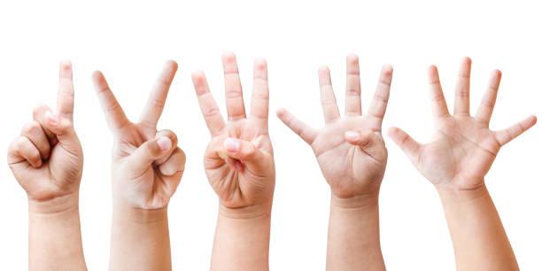 child's handen - menselijke vinger stockfoto's en -beelden
