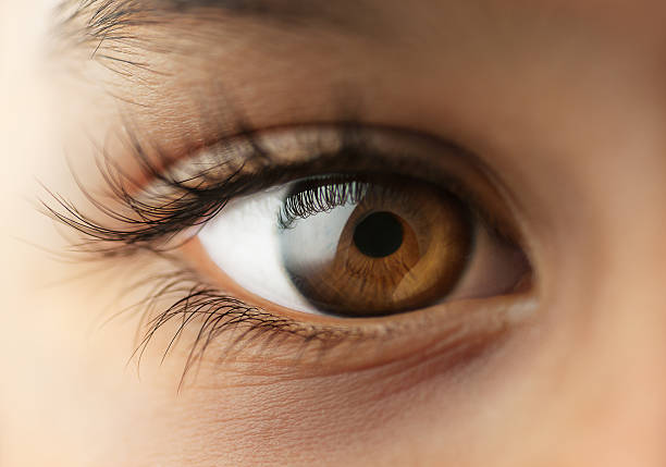 child's human eye - close to stock pictures, royalty-free photos & images
