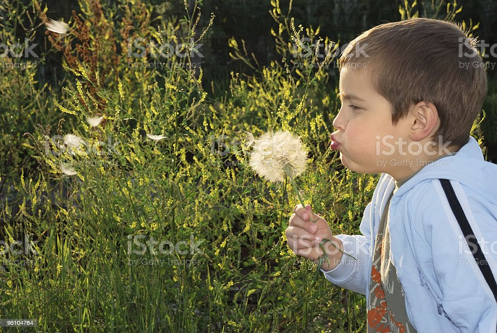 Childs wish royalty-free stock photo