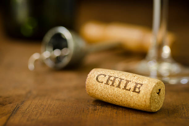 Chile Wine Cork Horizontal stock photo