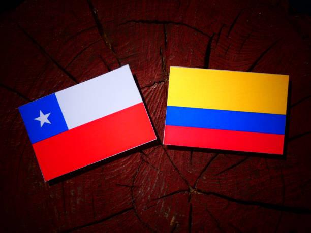 bandera chilena con bandera colombiana sobre un tocón de árbol aislado - bandera colombiana fotografías e imágenes de stock