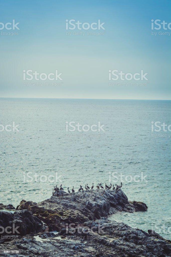Chilean shore line. stock photo