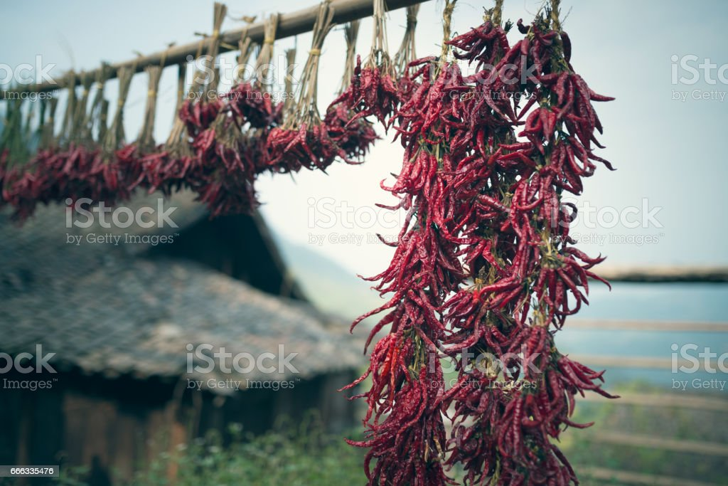 Chili and traditional Chinese architecture stock photo