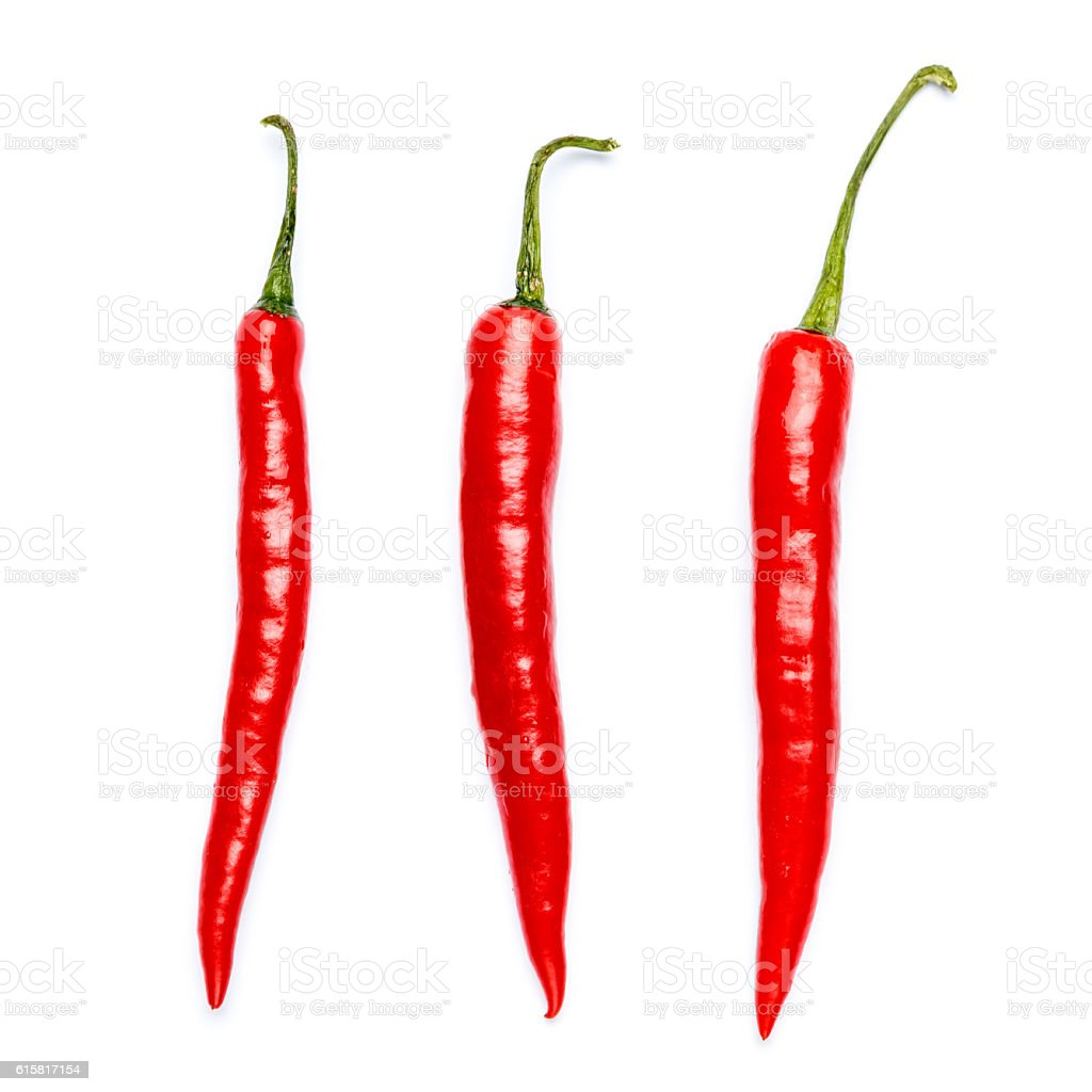 chili pepper isolated stock photo