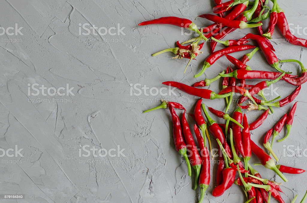 Chili pepper on the gray background. Hot spicy pepper stock photo