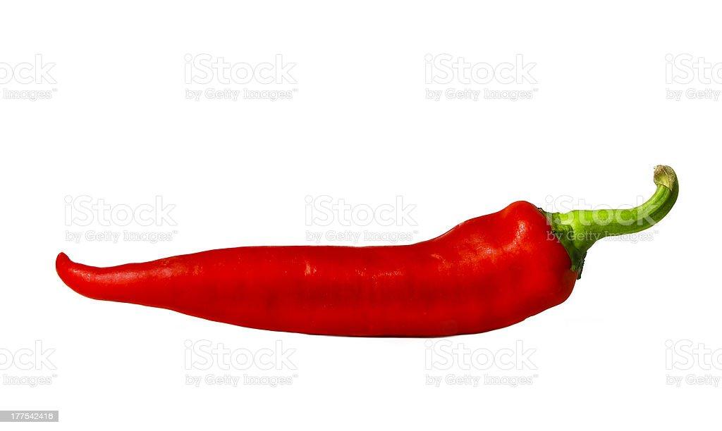 chili pepper stock photo