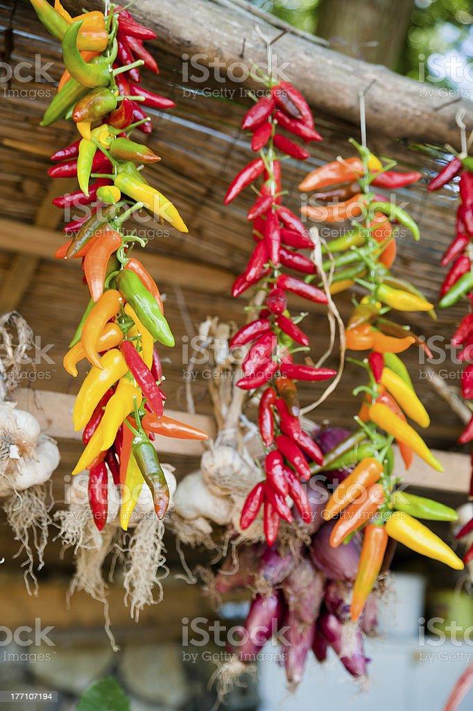 Chili Peppers and Garlic hanging around stock photo