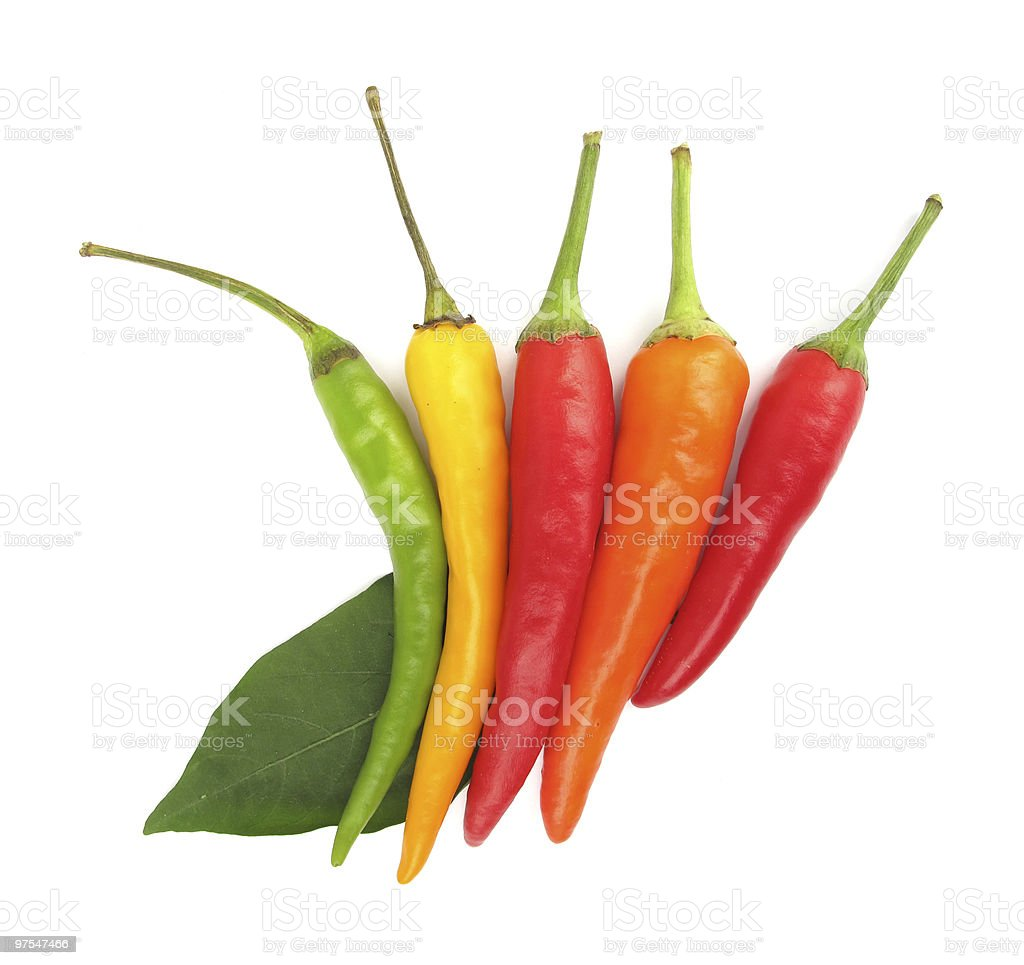 Chili peppers paprika royalty-free stock photo
