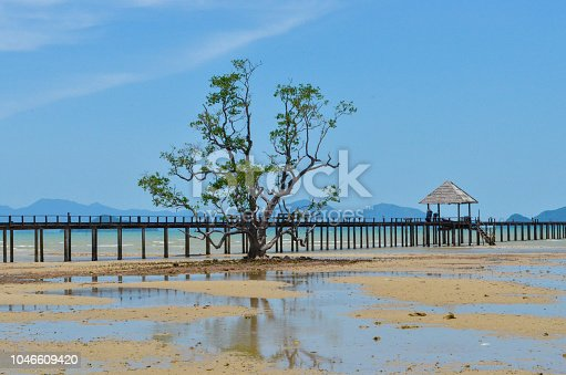 istock Chill villa and good view on the beach island with sea sand and tree. 1046609420