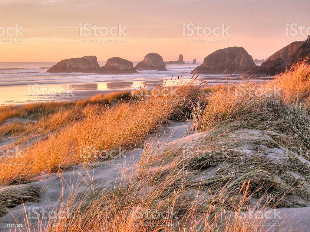 Chill Wave Vibe of the PNW royalty-free stock photo