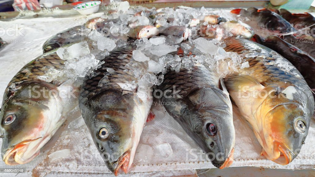 Chilled fresh fish-market in Ban Tha Heua village. Vientiane province-Laos.4748 stock photo