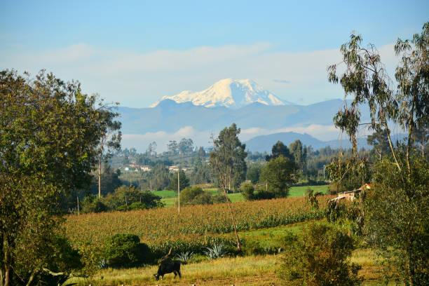 Chimborazo Volcano, the closest point to the sun, Ecuador stock photo