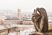 Gargoyle,  on Notre Dame Cathedral, in Paris France