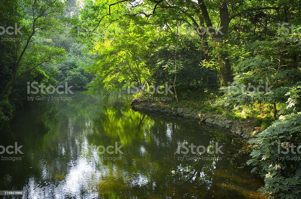 China Garden Pond royalty-free stock photo