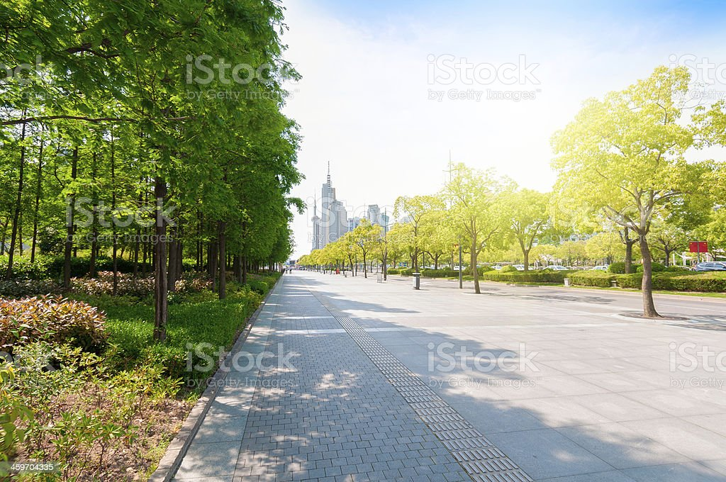 China Shanghai Century Avenue streetscape stock photo