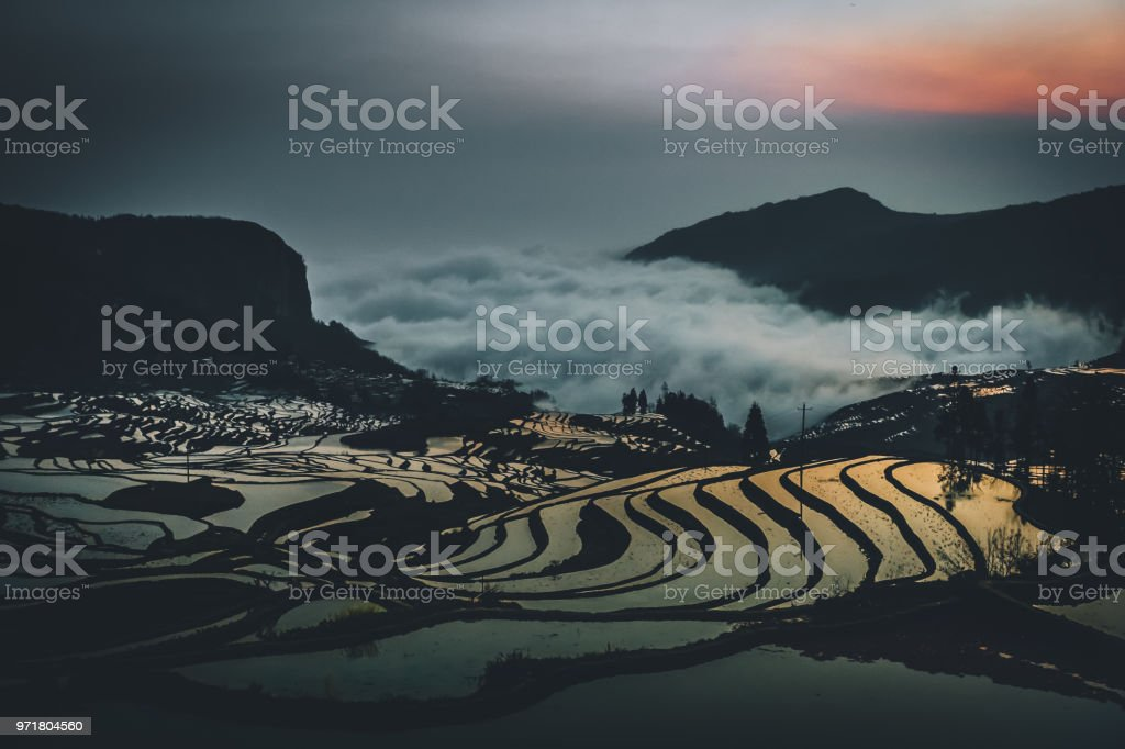 china yuan yang padi Rice Terraces early in the morning with reflection of sunlight from the water and cloud