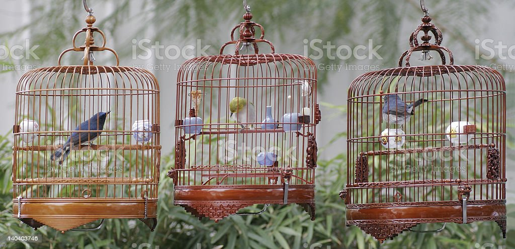 Chinese bird cages stock photo