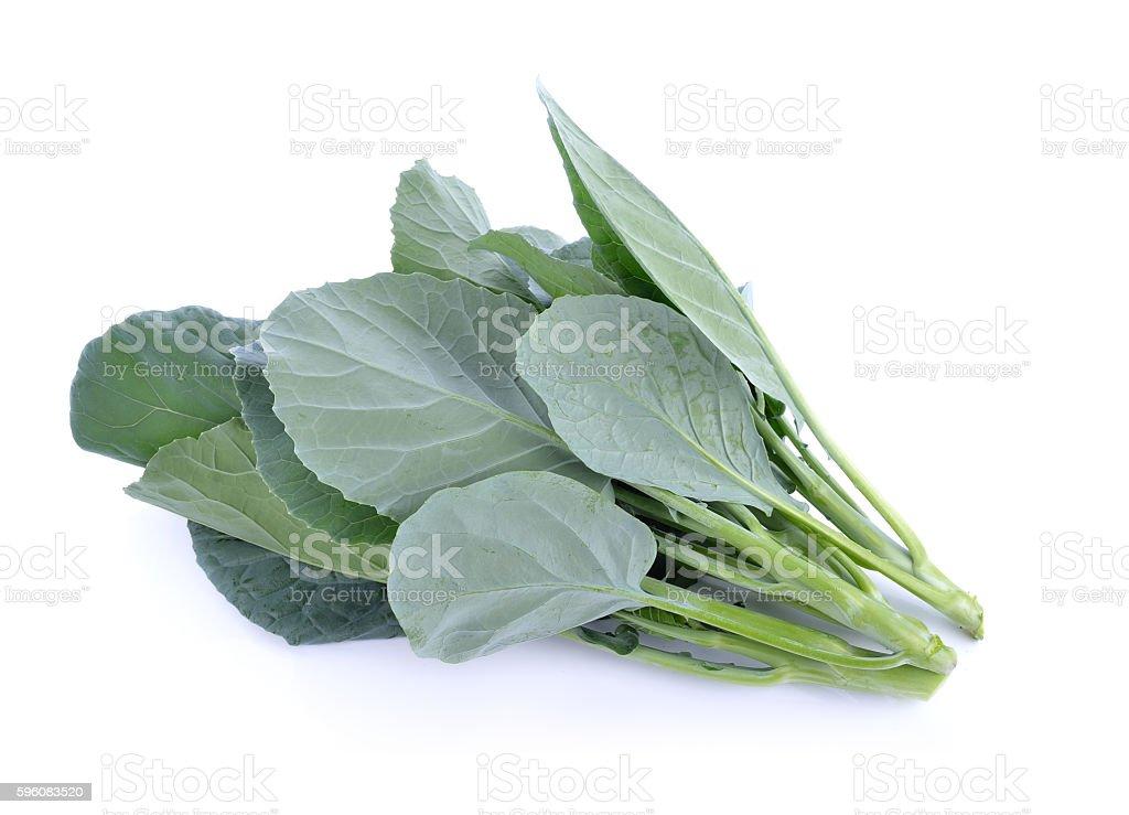 Chinese Broccoli Isolated on white background royalty-free stock photo