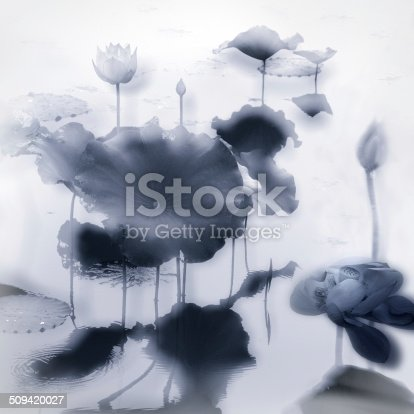 Ink painting scene of Lotus flower in the pond,Single tone image