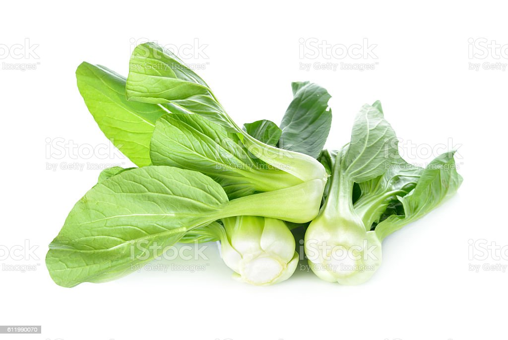 Chinese cabbage or bok choy on white background stock photo
