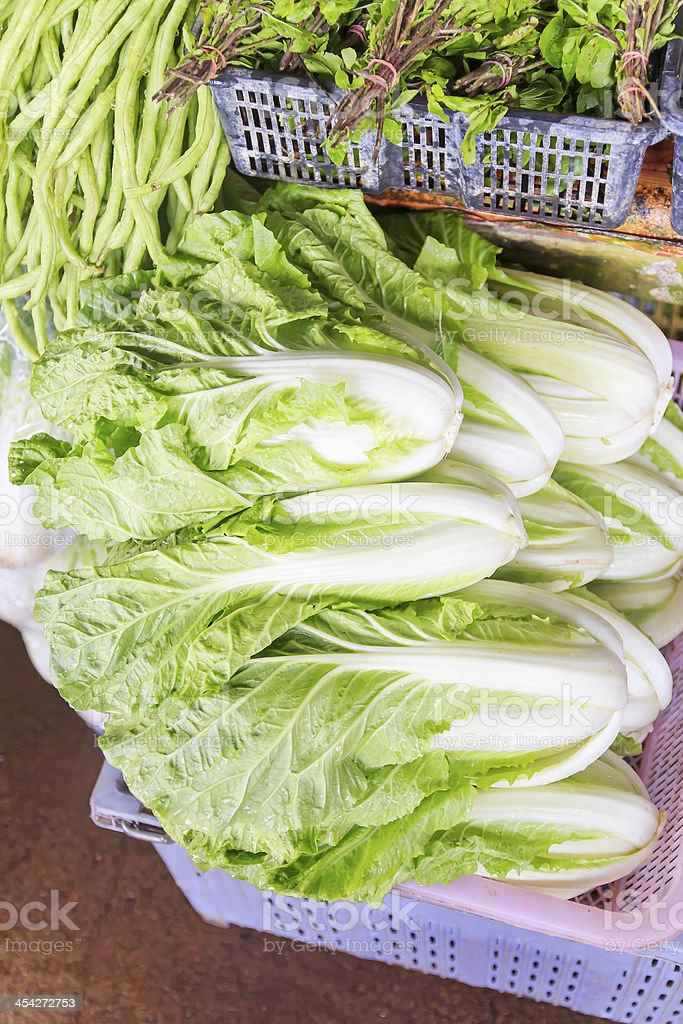 Chinese cabbage royalty-free stock photo