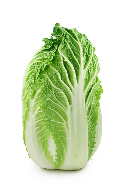 Chinese cabbage – Foto