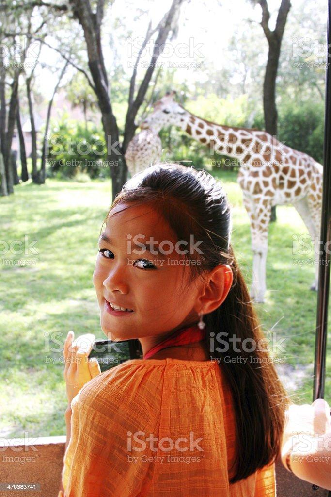 Chinese child seeing giraffe on safari royalty-free stock photo