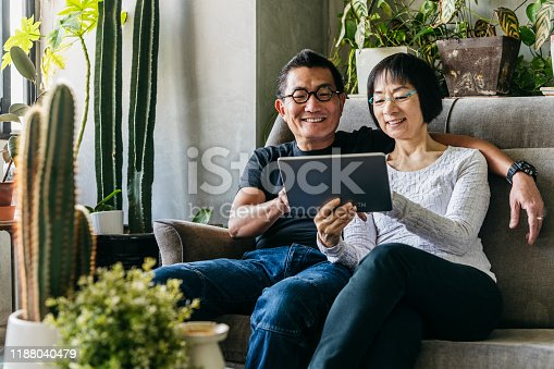 Cheerful man in his 50s and woman in her 60s looking at digital device, sitting on comfortable sofa in living room at home, silver surfers, technology, enjoyment