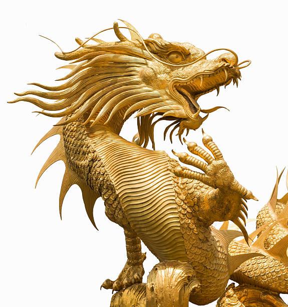 Chinesischer Drache – Foto