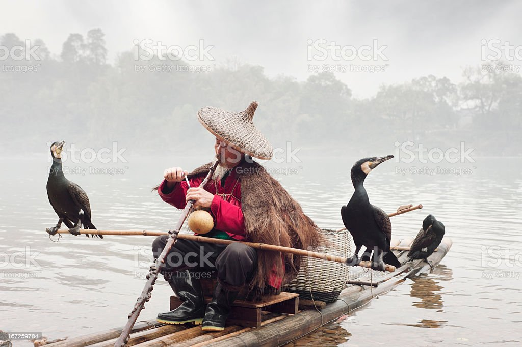 Chinese Fisherman With His Cormorants, Li river, Yangshuo, Guilin, China royalty-free stock photo