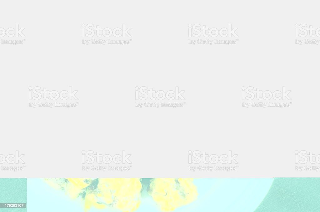 Chinese Food Close Up royalty-free stock photo