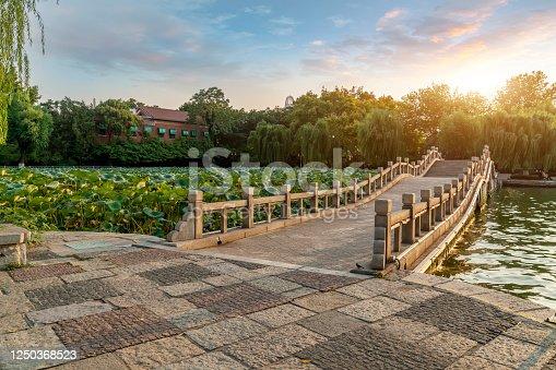 Chinese Garden Lake landscape