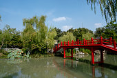 Chinese garden:willow,bridge and pond