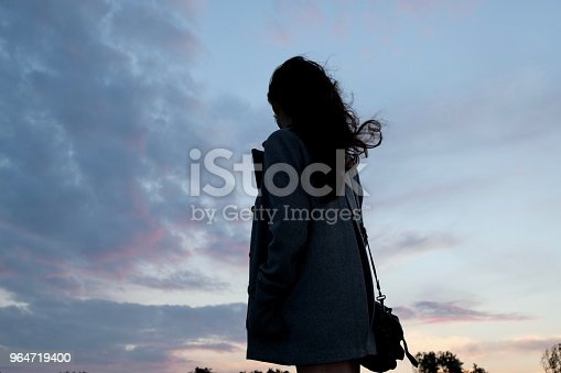 Chinese Girl Against Sunset Sky Hair Blowing Stock Photo & More Pictures of Adult