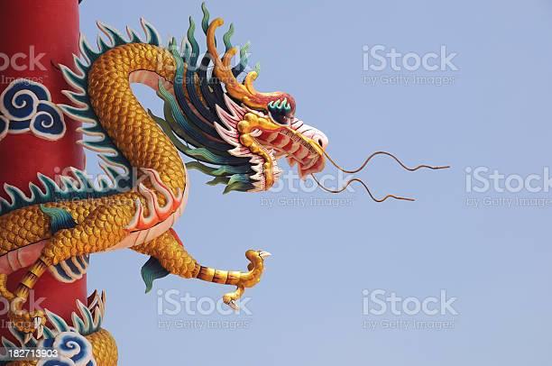 Gold dragon sally commercial asia golden dragon corporation