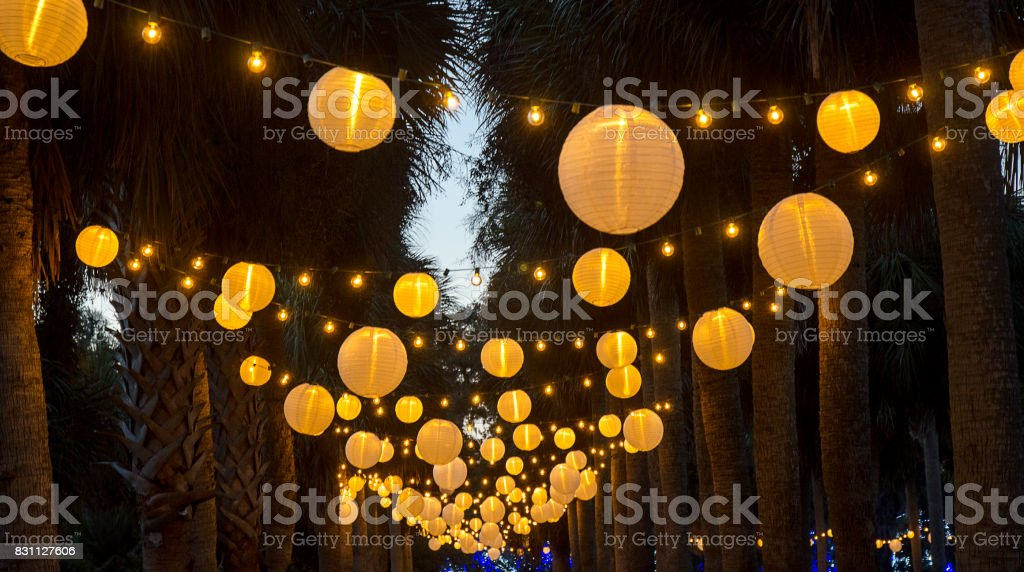 chinese lanterns hanging from palm trees royalty free stock photo