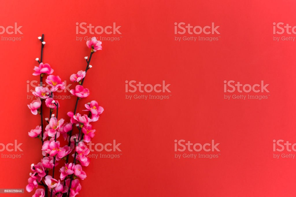 chinese new year background plum flowers on red background royalty free stock photo