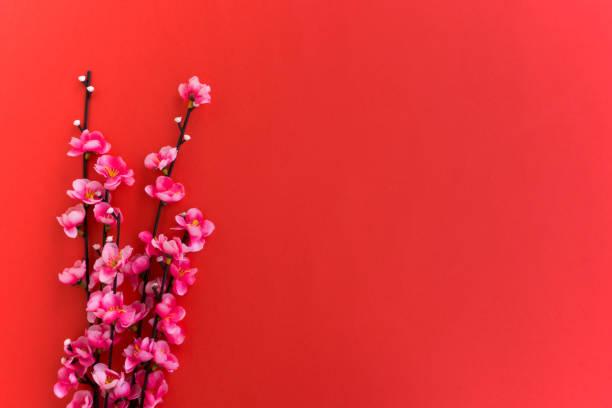 chinese new year hintergrund, pflaumeblumen auf rotem grund. - chinesischer kalender stock-fotos und bilder