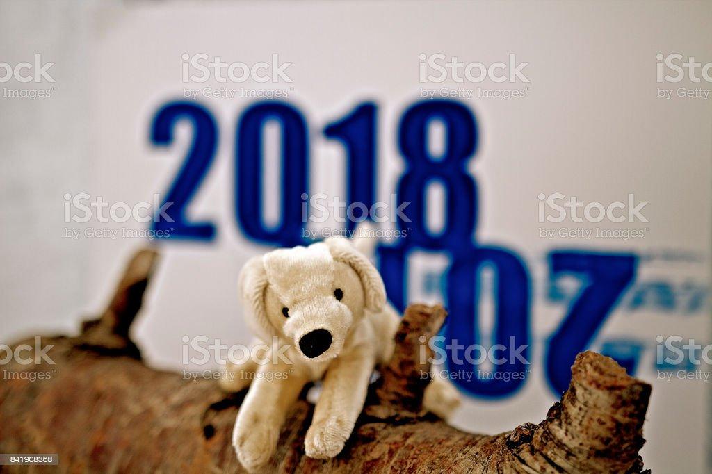 Chinese New Year - Brief stock photo