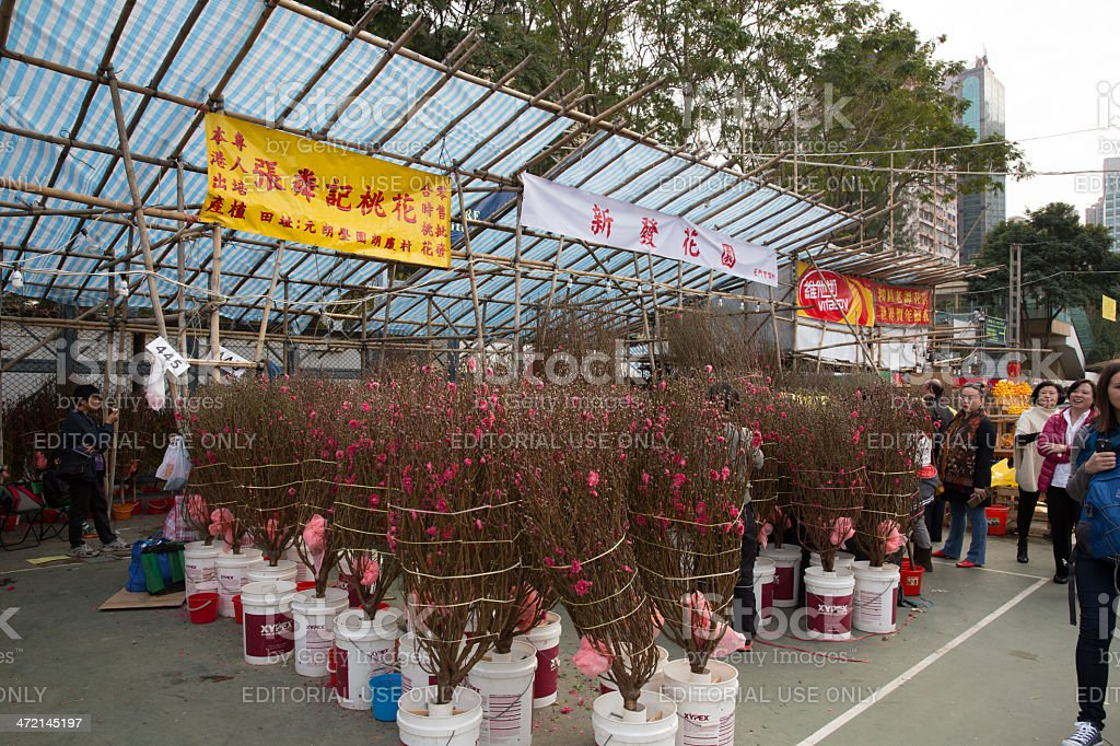 Chinese New Year Market royalty-free stock photo