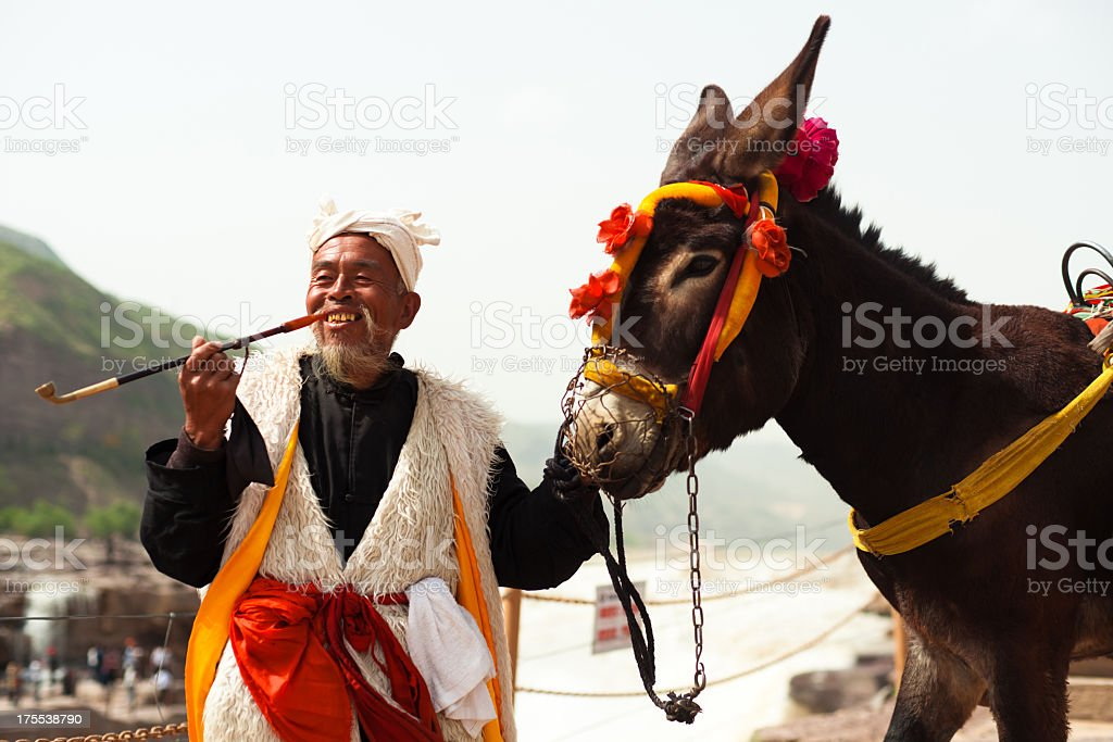 Chinese old man with his donkey stock photo
