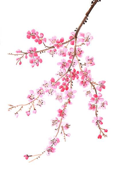 Chinesische Malerei von Blumen – Foto