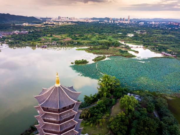chinesischer park mit lotusblumen see antenne - lotus symbol stock-fotos und bilder