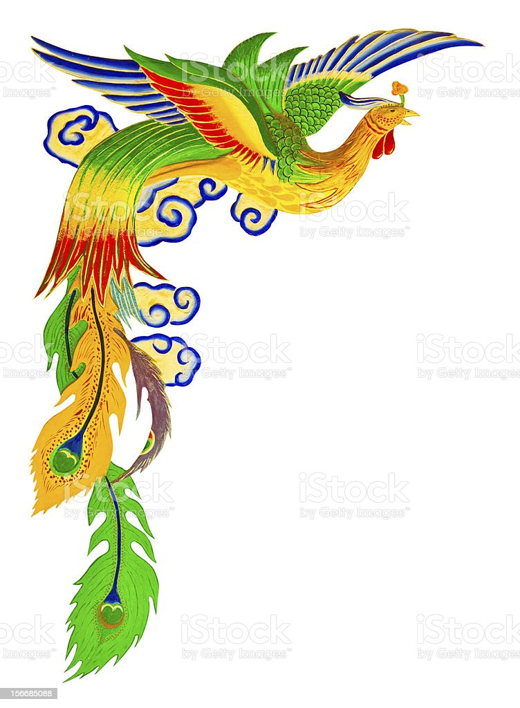 chinese peacock with clipping path royalty-free stock photo