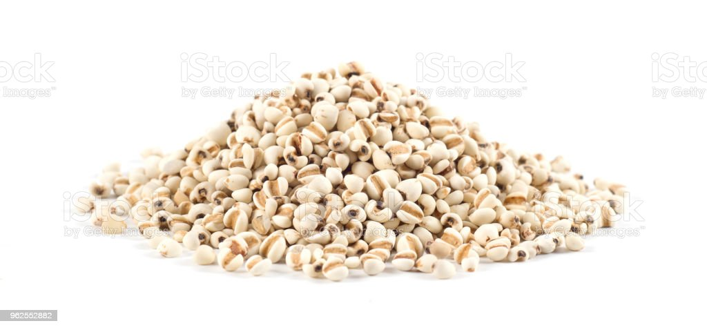 chinese pearl barley, job's tears,traditional chinese herbal medicine - Royalty-free Alternative Medicine Stock Photo