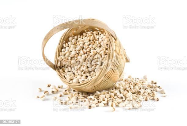 Foto de Cevadinha Chinesa Trabalho De Lágrimas Medicina Herbal Chinesa Tradicional e mais fotos de stock de Bem-estar