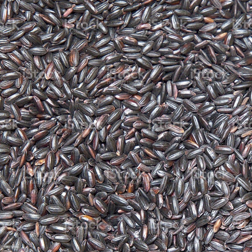 Chinese rice royalty-free stock photo