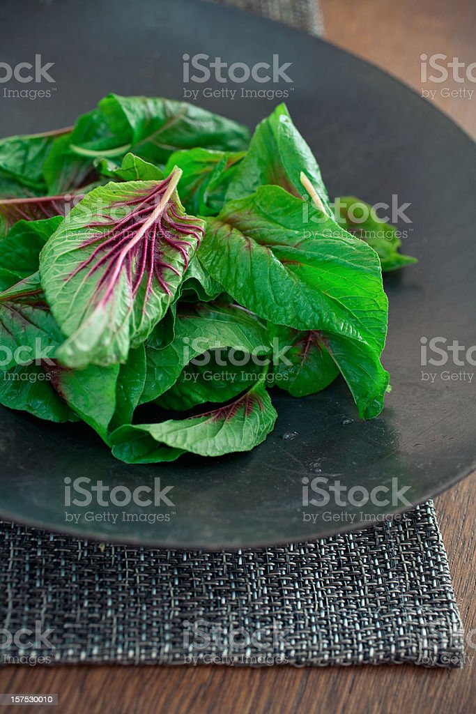 Chinese Spinach stock photo