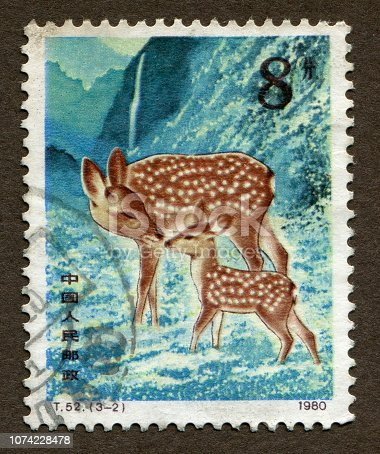 istock Chinese Stamps: Sika deer mother and child circa 1980 1074228478